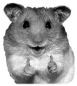 hamster_seal_of_approval